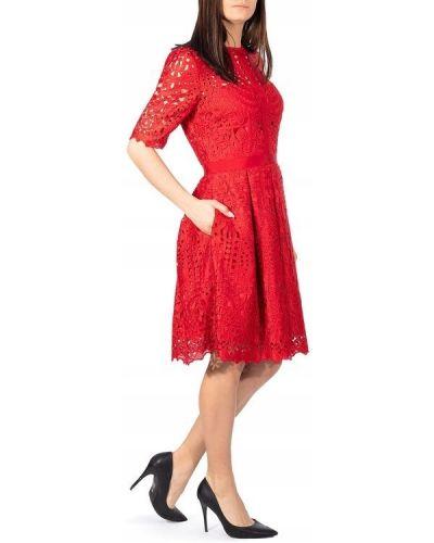 Czerwona sukienka koronkowa krótki rękaw Ted Baker