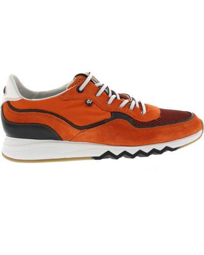 Pomarańczowe sneakersy Floris Van Bommel