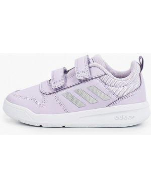 Кроссовки фиолетовый из искусственной кожи Adidas
