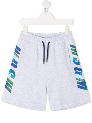 Прямые хлопковые серые спортивные шорты Msgm Kids