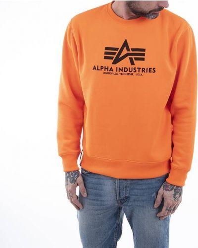 Хлопковый базовый черный свитер Alpha Industries