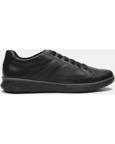 Кожаные кроссовки - черные Pegada