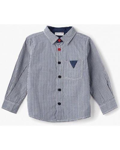 Синяя рубашка Coccodrillo