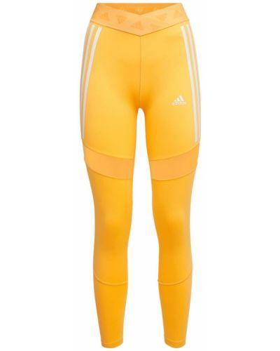 Pomarańczowe rajstopy z siateczką z wysokim stanem Adidas Performance