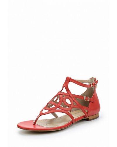 Кожаные сандалии Alesya