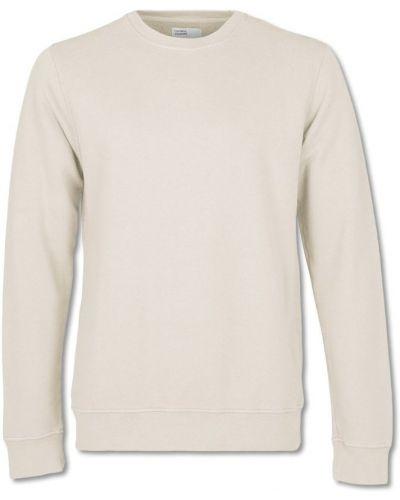 Biała klasyczna bluza Colorful Standard