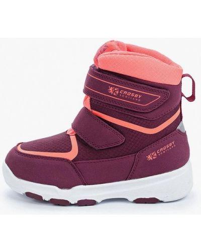 Ботинки фиолетовый Crosby