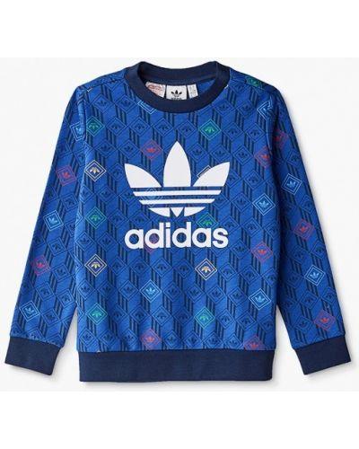 Синий свитшот Adidas Originals