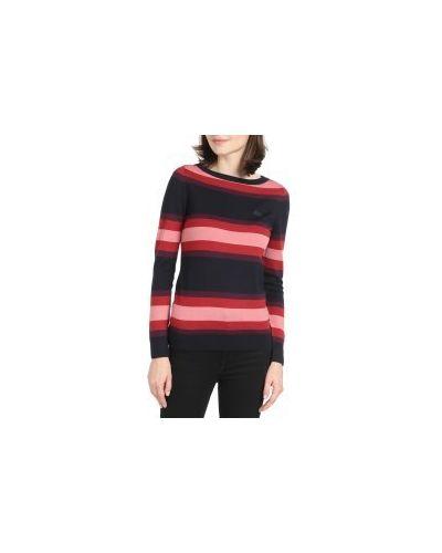Синий свитер Lacoste