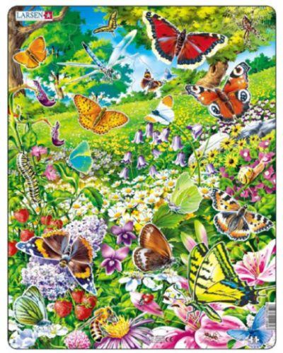 Бабочка с бабочками Larsen