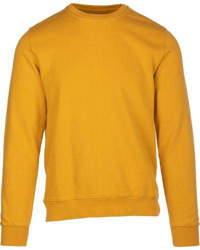 Żółty sweter Colorful Standard